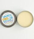 500mg Source CBD Salve