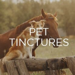 Pet Tinctures