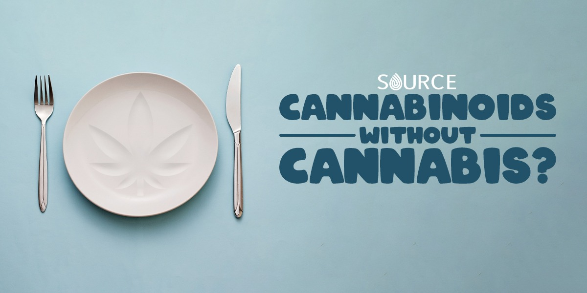 foods with cannabinoids